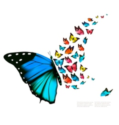 Beautiful butterfly background vector