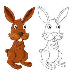 Animal outline for wild rabbit vector