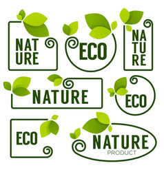 eco and nature green fresh leaves emblems vector image