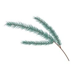 Fir branch icon cartoon style vector image vector image