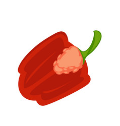 Half of red pepper vector