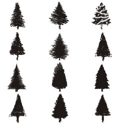 Abstract Pine Trees Silhouette vector image vector image