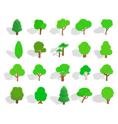 green tree icon set isometric style vector image vector image