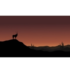 On hills antelope landscape silhouette vector