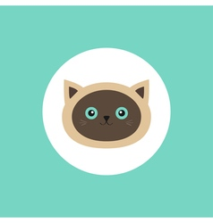 Siamese cat head round circle icon in flat design vector