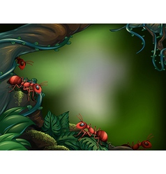 Ants at the rain forest vector