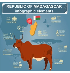 Madagascar infographics statistical data sights vector
