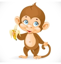 Cute baby monkey with banana stand on a white vector