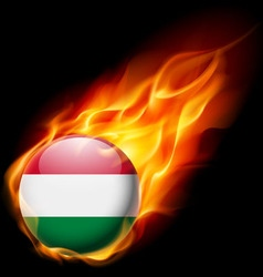 Round glossy icon of hungary vector