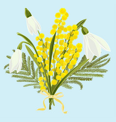 Spring floral background with beautiful snowdrops vector