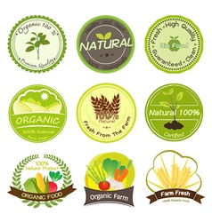 Organic and natural labels vector
