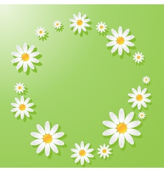 Chamomile green vector