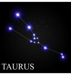Taurus zodiac sign with beautiful bright stars on vector