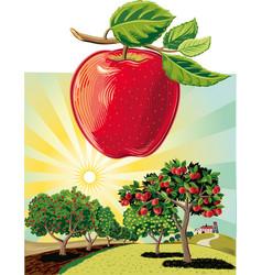 Apple orchard landscape vector