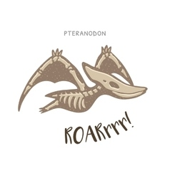 Cartoon pteranodon dinosaur fossil vector