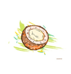 coconut with colorful splashes vector image vector image