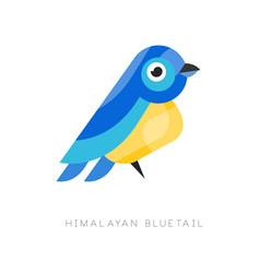 Himalayan bluetail colorful bird vector
