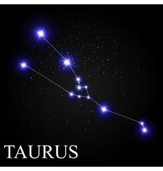 Taurus zodiac sign with beautiful bright stars on vector