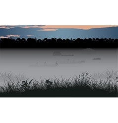 Foggy swamp and wild coniferous forest vector image