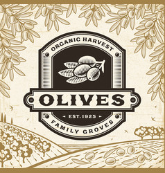 retro olives label on harvest landscape vector image
