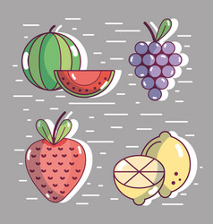 Set healthy fresh fruit food vector