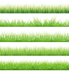 Green grass big set vector
