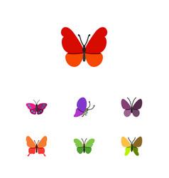 flat monarch set of beauty fly archippus violet vector image