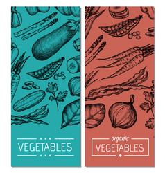 natural vegetables hand drawn flyer set vector image