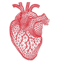 human heart with geometric pattern vector image vector image
