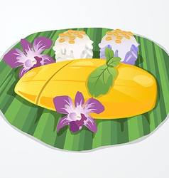 mango rice vector image