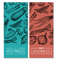 natural vegetables hand drawn flyer set vector image vector image