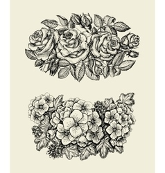 Flowers hand drawn sketch flower roses geranium vector