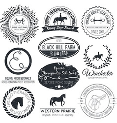Equine Logo vector image