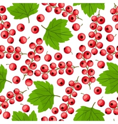 Seamless nature pattern with red currants vector