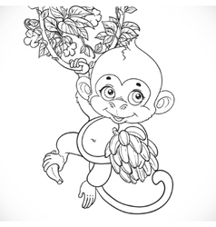 Cute baby monkey with bananas outlined isolated on vector