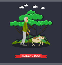 Elderly man walking dog in vector