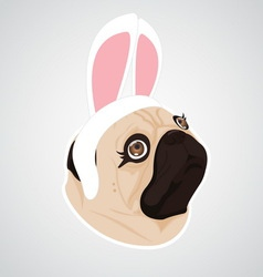 Lady dog rabbit vector