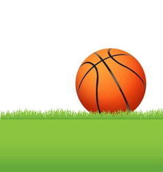 Basketball in the grass vector