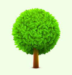 cute tree with green leaves realistic spring or vector image vector image