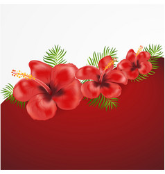 exotic tropical hibiscus flowers vector image vector image