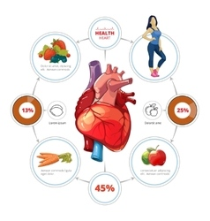 Heart medical infographics vector image