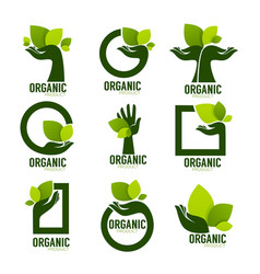 nature product logo set ecological symbol and vector image vector image