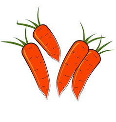 Some carrots vector image