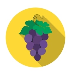 Bunch of wine grapes icon in flat style isolated vector image