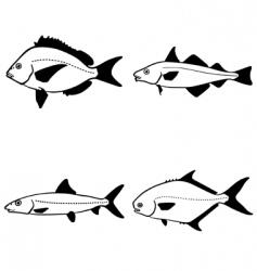 vector fish vector image