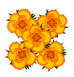 bouquet of yellow roses icon vector image