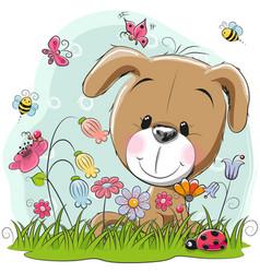 cute cartoon puppy on a meadow vector image