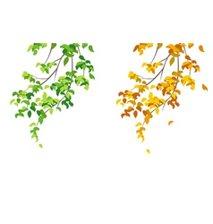 Green and yellow branches vector