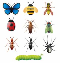 simple insect designs vector image