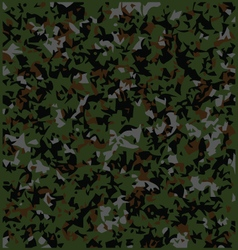 Colorful camouflage vector